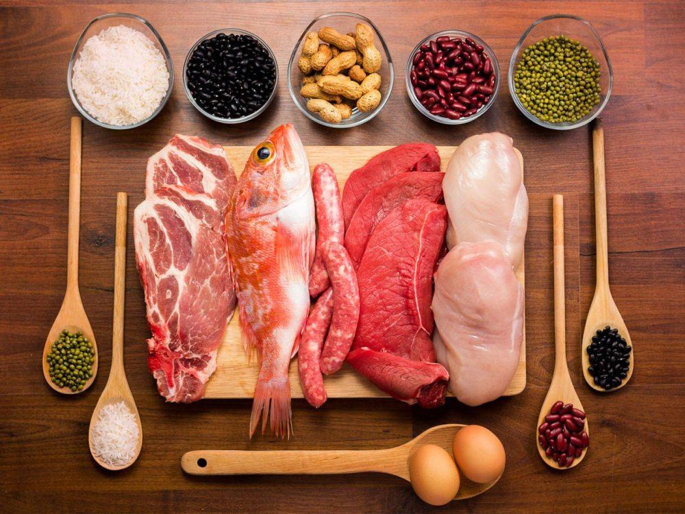 πηγές-πρωτεΐνης