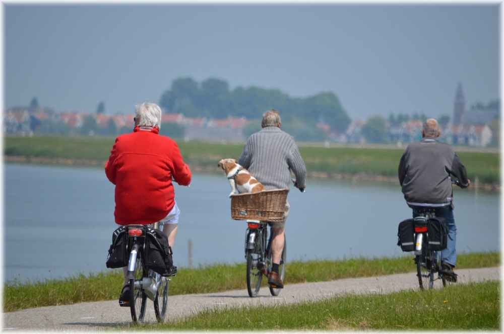 Old-men-biking
